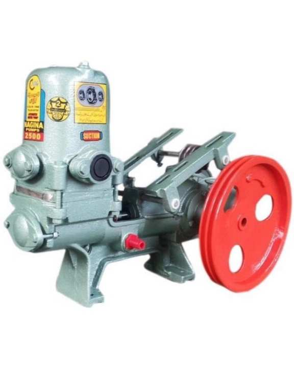 Reciprocating Positive Displacement Pump (GD 2500) SIZE: 1¼×1¼