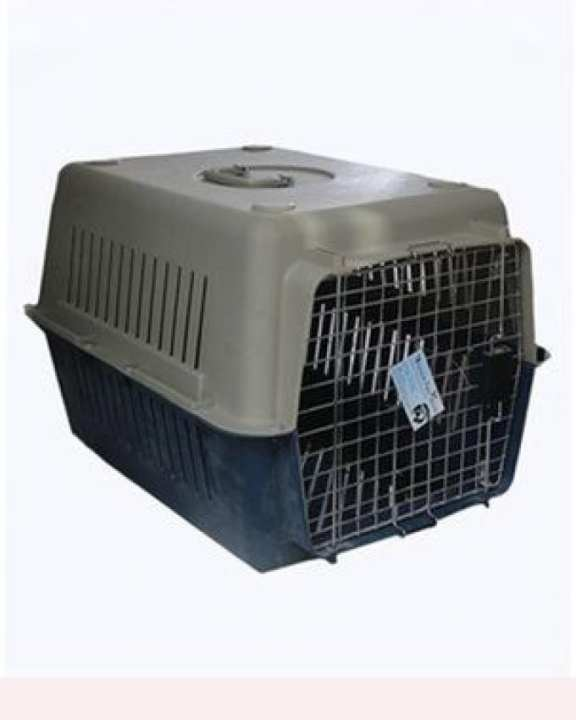 Traveling Jet Box - For Adult Dogs