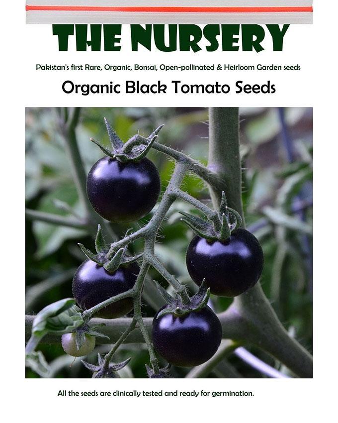 Organic Black Tomato Seeds