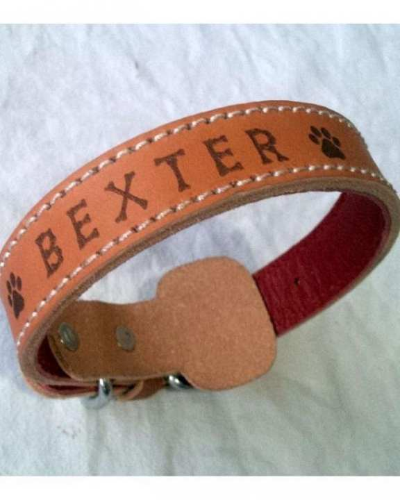 Leather Dog Collar with Pet Name Engraved