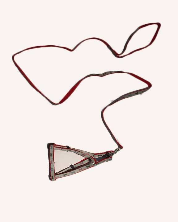 Puppy/Kitten Harness with leash-Red Color-DCS-2005