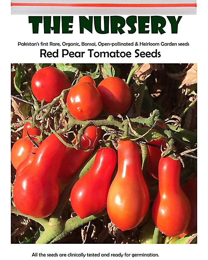 Organic Red Pear Tomato Seeds