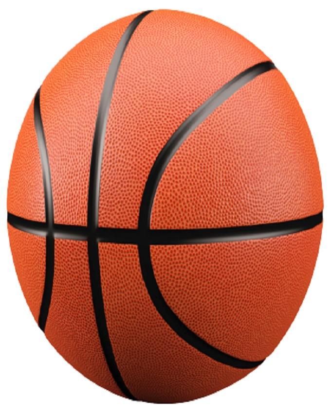 Molten Basket Ball - Brown