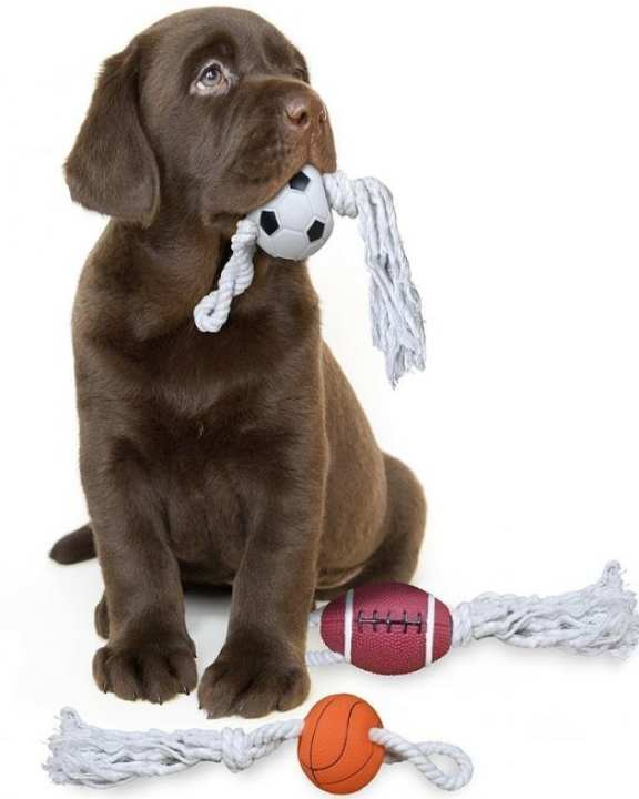Dog Toys Squeaky Sport Ball With Rope - Football
