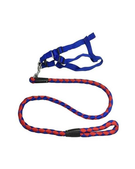 Safety Leash For Dogs - Red & Blue