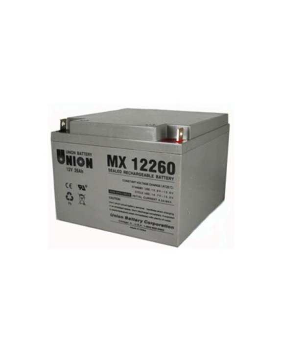 12V/26AH Maintenance Free Battery