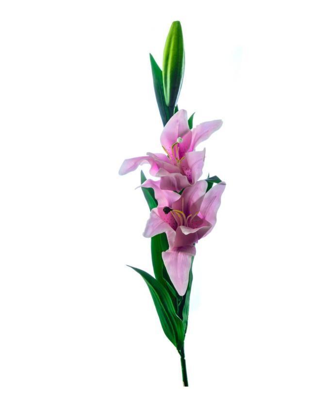 ZR123 - Lillie Pink Long Stemp - Pink