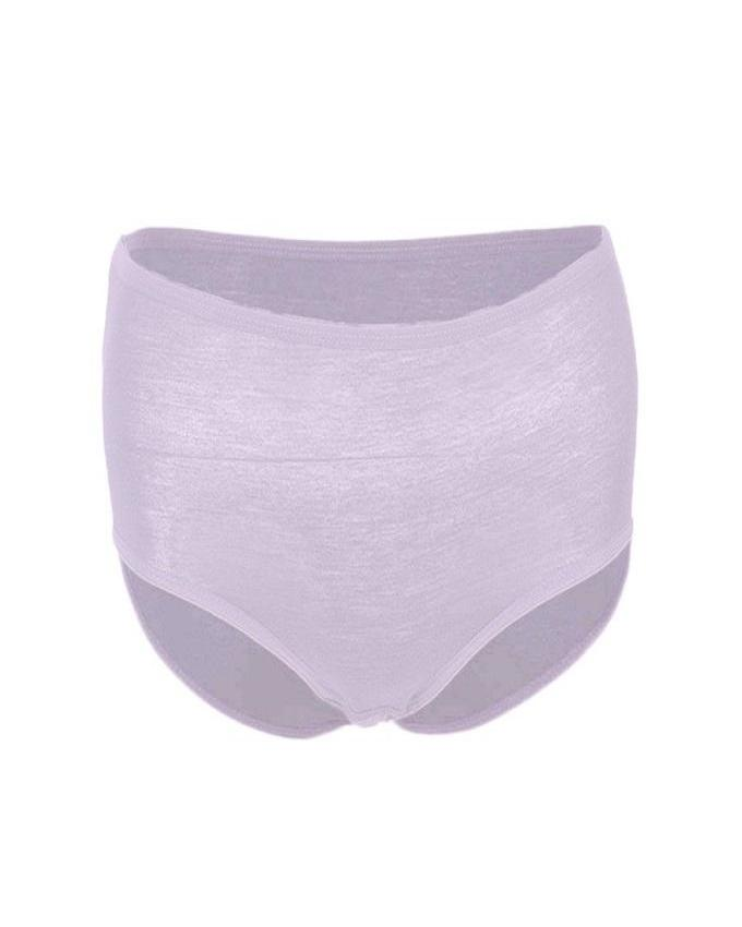 Pack of 2 - Viscose  Panty For Women