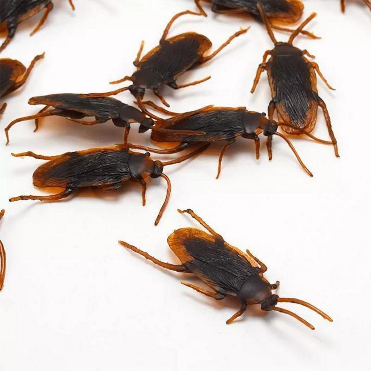 Pack of 12 Pcs - Halloween Gadget Plastic Bugs Cockroaches - Joke Decoration Rubber Toy