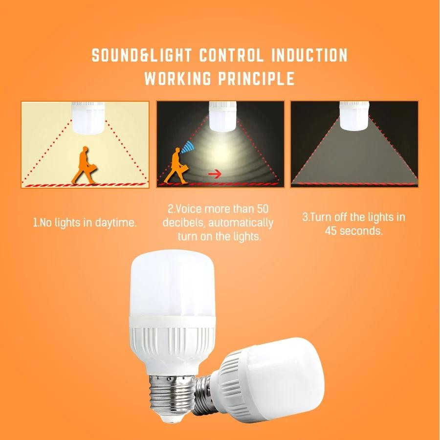 Lighting Decorative Products Online In Pakistan Making Parts And Wiring Supplies Craft Kits Night Light Sound Sensor Control Pir Smart Led Bulbs 6w E27 Ac220v