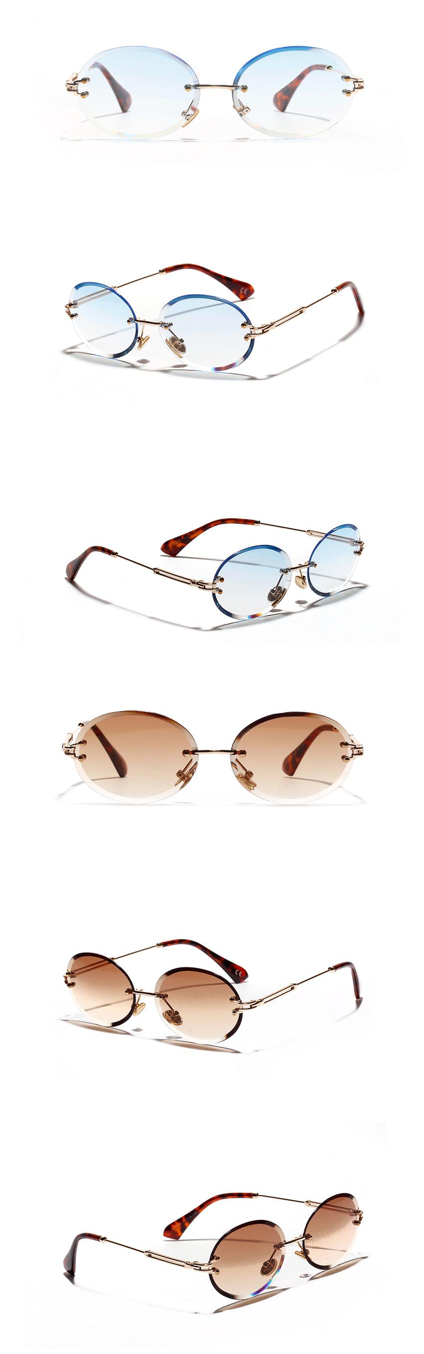 تسلط هدية تذكارية على أي حال Light Transmission Sunglasses Psidiagnosticins Com