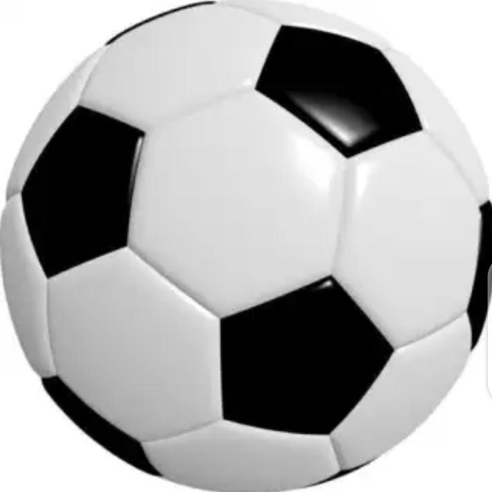 Standard Size Leather Football - Black & White