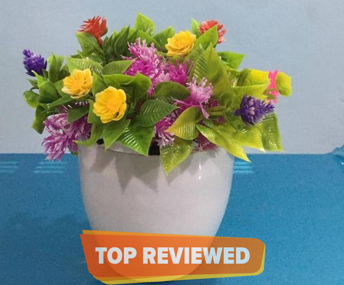 Beautiful Artificial Plants For Decor  - Assorted