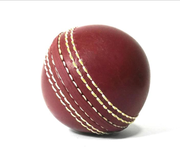 Cricket Training Practicing Hard Ball Trainer