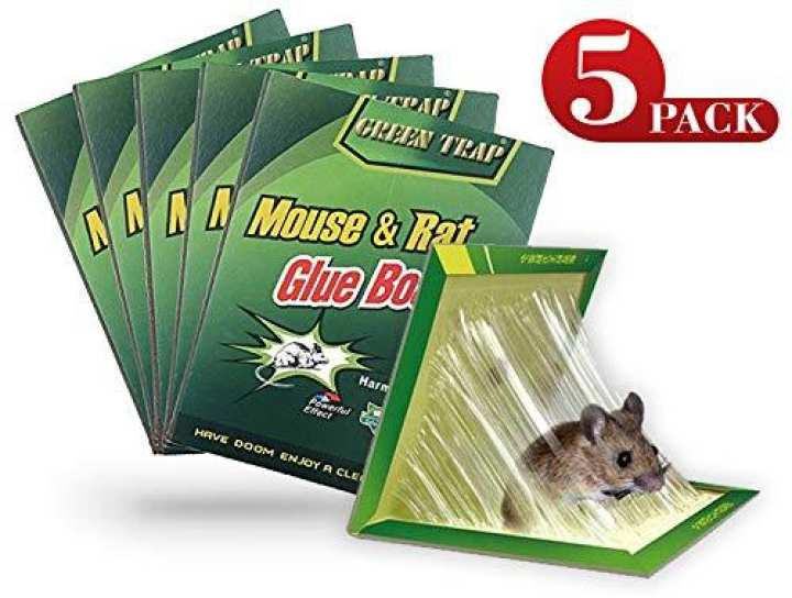 Pack Of 5 Reusable Expert Catch Mouse Glue Traps Mouse Size Glue Traps Sticky Boards Mouse Catcher Mice Professional Strength Glue Insect Lizard Spider Cockroach Rodent Snake Strongly