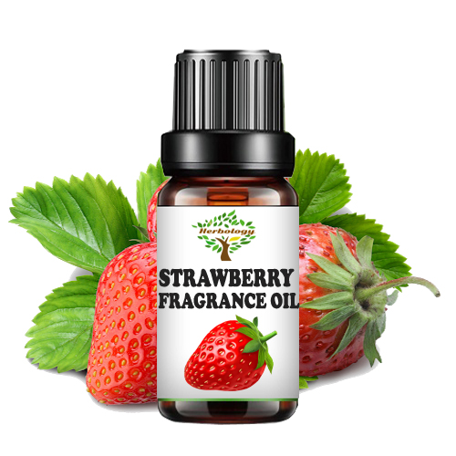 Strawberry Fragrance Oil - Candle Making Scent - Home Diffuser Fragrance Oil