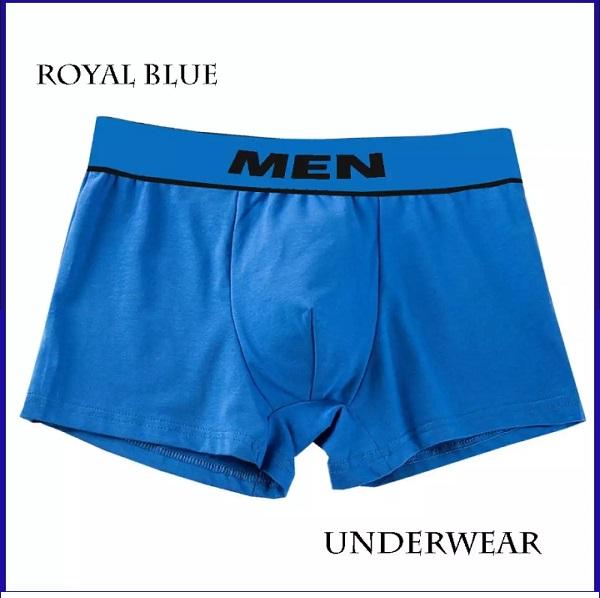 Imported Fashion Underwear/Brief/Trunk for Men-Multicolor