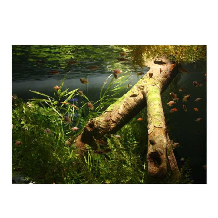 Aquarium Background Poster Fish Tank Decorations Landscape # 122*61cm