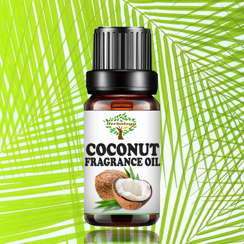 Coconut Fragrance Oil 10 ML - Candle Making Scent - Handmade Soap - Home Diffuser Aromatherapy Oil