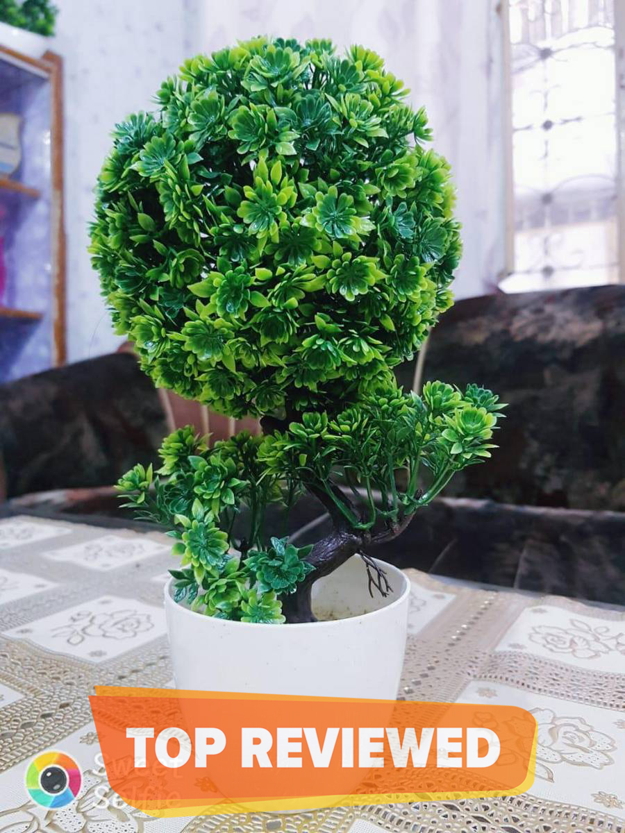 NS Collection Artificial Boll Shape Flower With Pot Decoration Piece -Green Best for home and office use