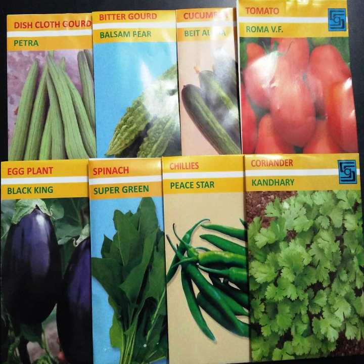 Summer Vegetables Seeds- 8 premium quality seeds
