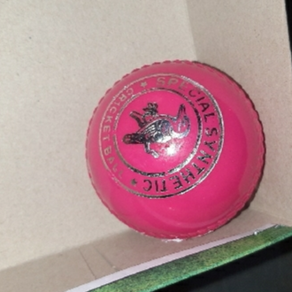 Practice Cricket Hard Ball (Synthetic) pink