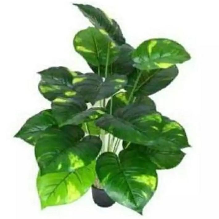Artificial money plant indoor outdoor