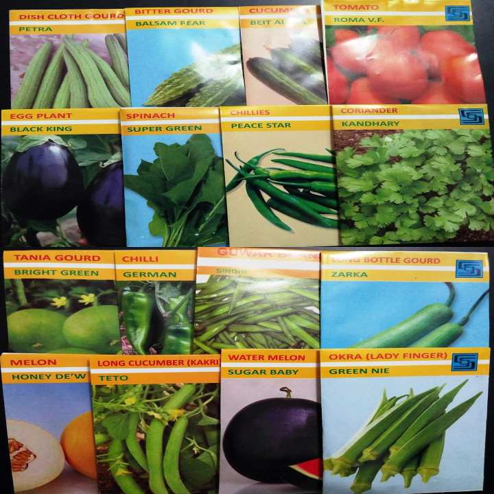Summer vegetables Seeds - 16 types of premium quality seeds