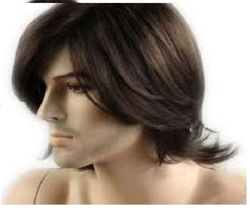 Men Straight Short Hair Wig