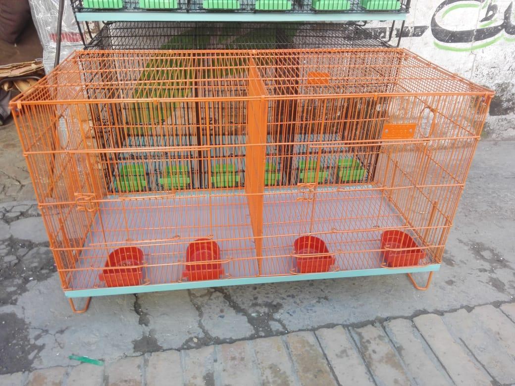 c64c137cb Buy UN Traders bird at Best Prices Online in Pakistan - daraz.pk