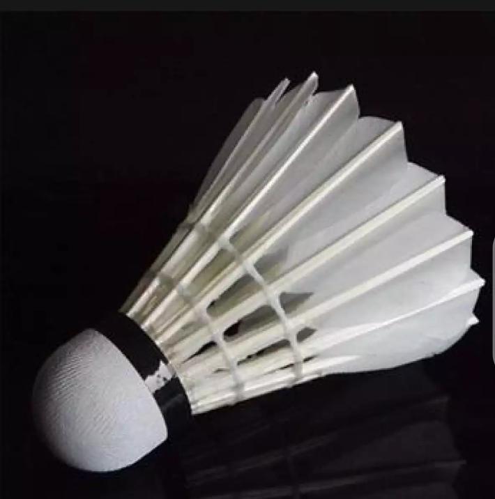 Badminton Racket Shuttles