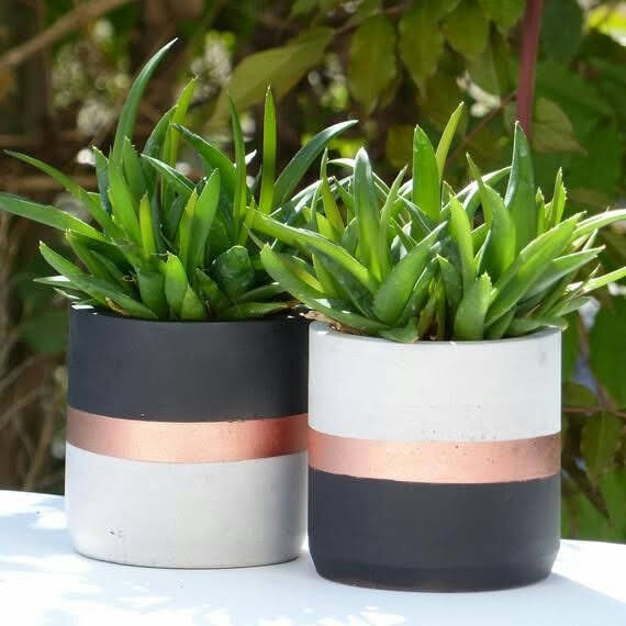 fancy clay pots for home decorate