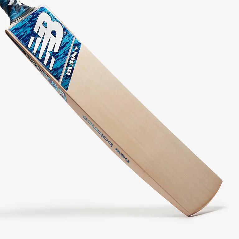 Hard ball Cricket Bat Blue