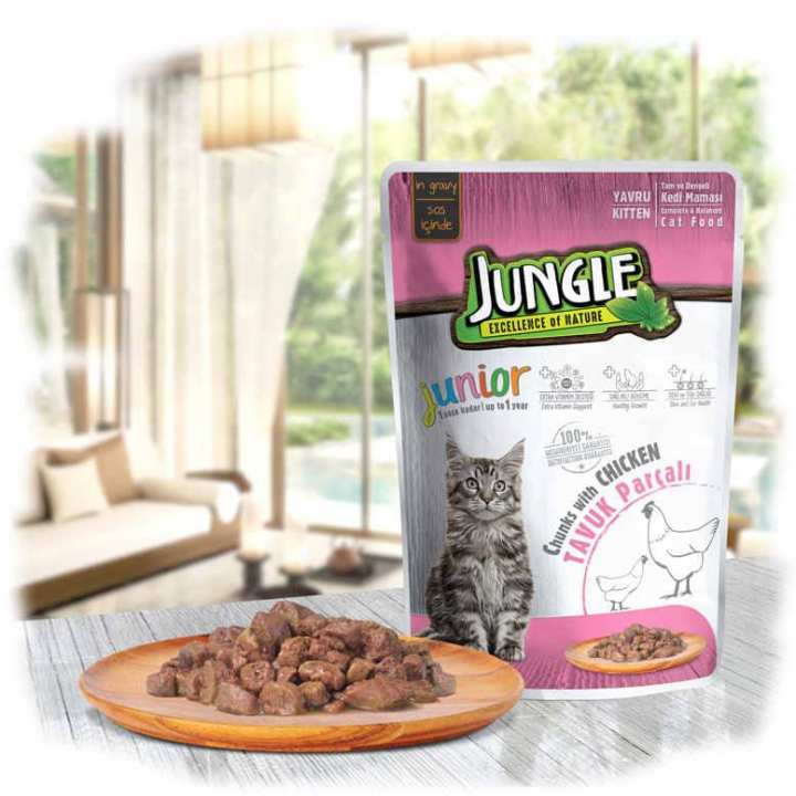 pack of 2 Cat Jelly Pouches Different Flavors /100gm