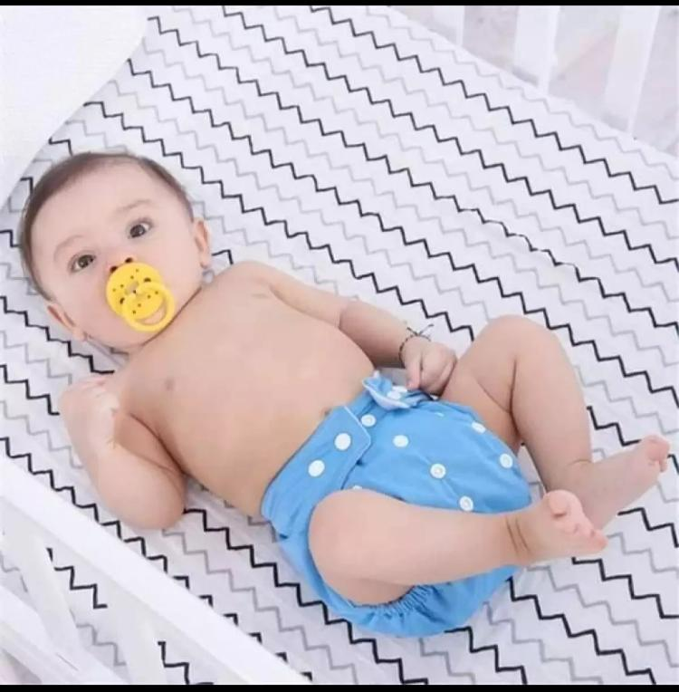 Plastic 0-3 Years Old Baby Reusable Adjustable Washable (Plastic) Diapers Blue
