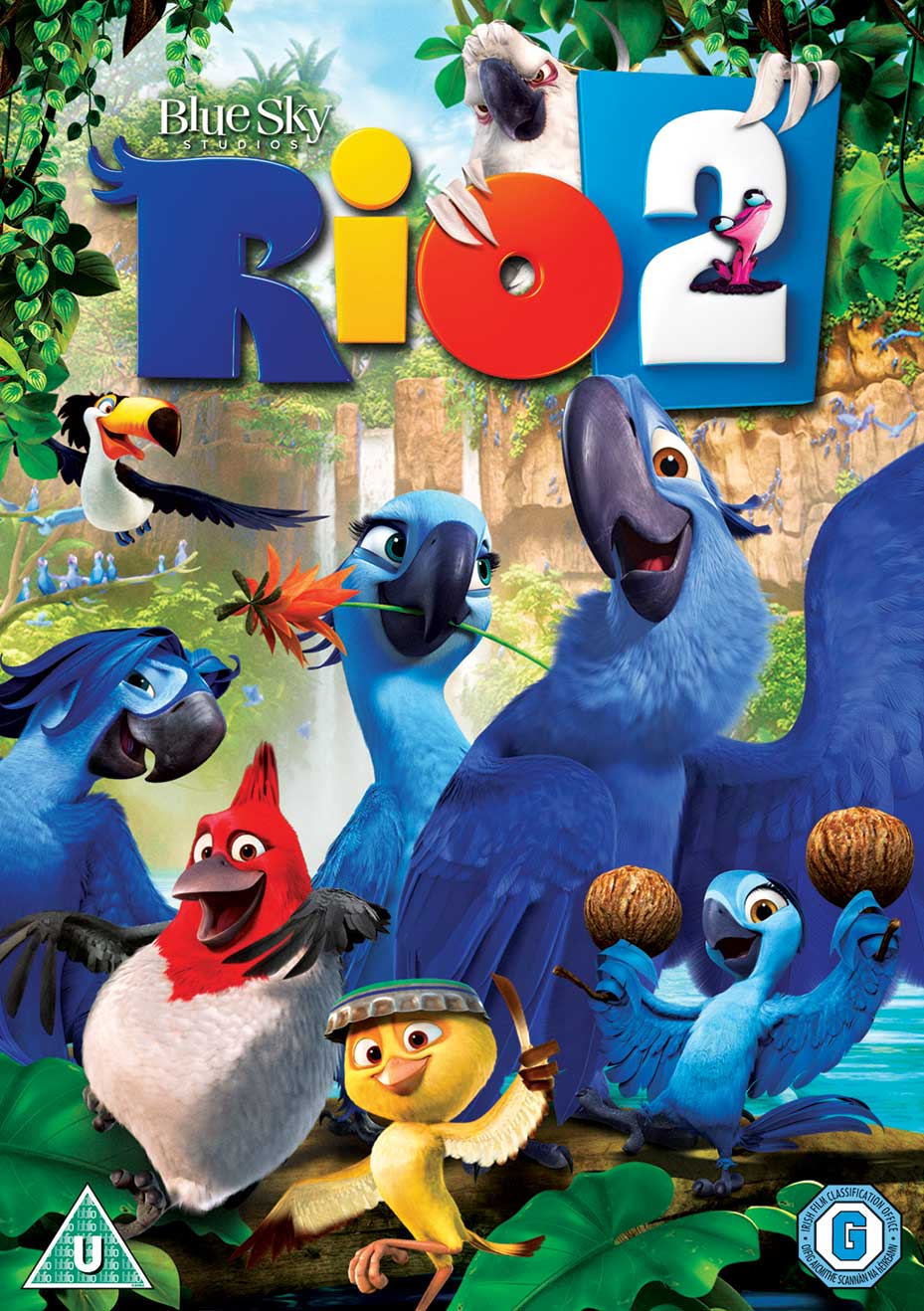 Rio 2 2014 1080p Full Hd 3d Half Side By Side Dual Audio Hindi English Buy Online At Best Prices In Pakistan Daraz Pk