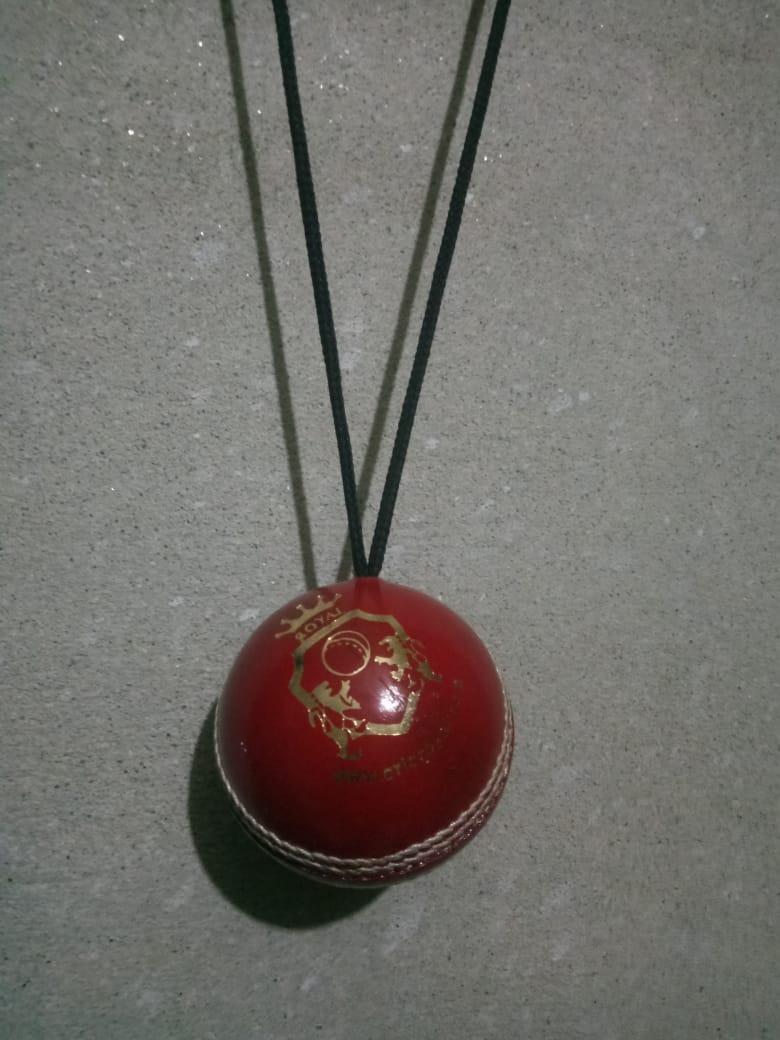 Cricket Hanging Hard Ball for Bat Stroke