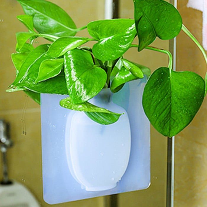 Wall Hanging Silicone Flower Pot Sticker Plant Rack for Decoration Home Kitchen Office Bathroom Silicon flower vase, Silicon wall flower pot, Silicon wall flower pot stand ,