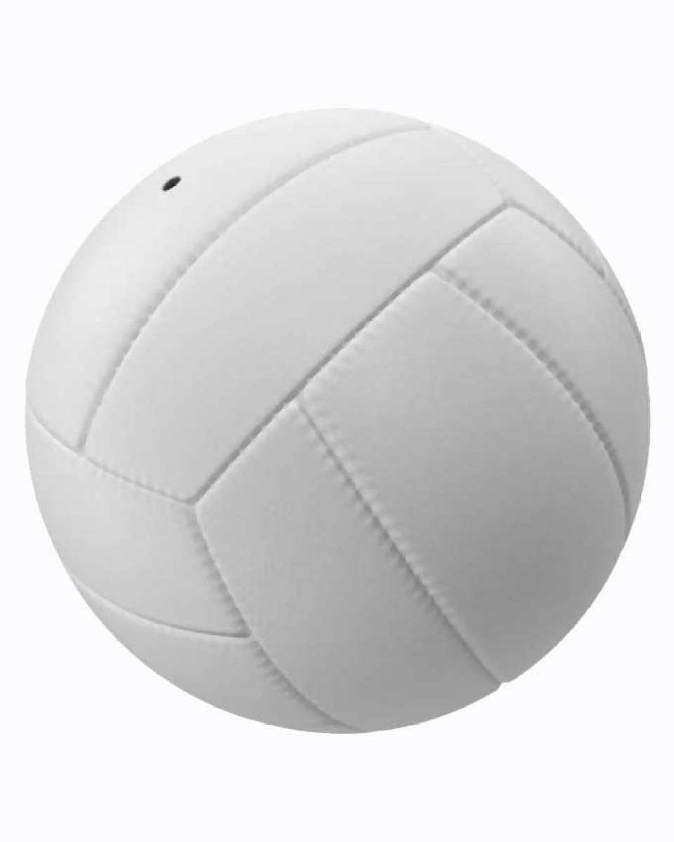 Double Star Volley Ball