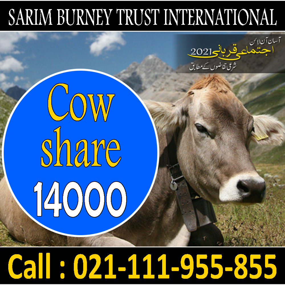 Online Qurbani   Cow   Part