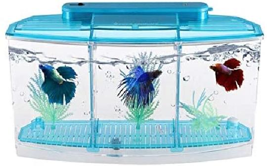 Aquariums at Best Price in Pakistan - daraz.pk